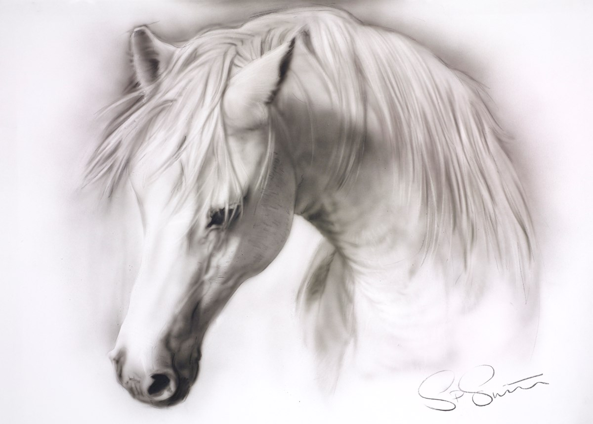 Horse Study IV by steven smith -  sized 32x23 inches. Available from Whitewall Galleries